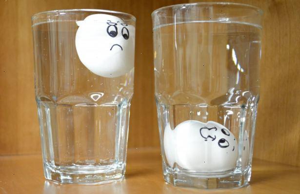 färska ägg test
